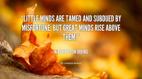 Little minds are tamed and subdued by misfortune; but great minds rise agove them