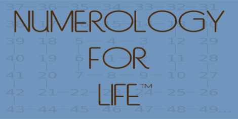 logo-256x512-copy