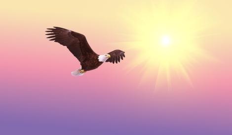Weekly Spiritual Energy for October 30 through November 5, 2017