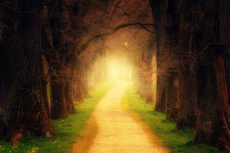 Weekly Spiritual Energy Guidance January 21 - January 27, 2019