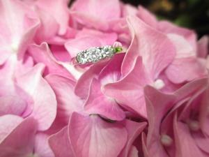 ring-1665623_960_720