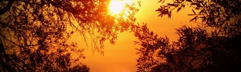 Weekly Spiritual Energy Guidance November 18 – November 24, 2019