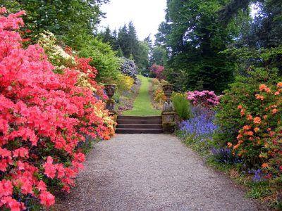 Walking the Spiritual Path Day 53 — Lady Kamberlyn…. intuitive guidance and spiritual advice