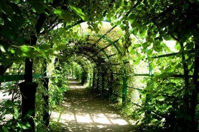 Walking the Spiritual Path Day 84 — Lady Kamberlyn…. intuitive guidance and spiritual advice