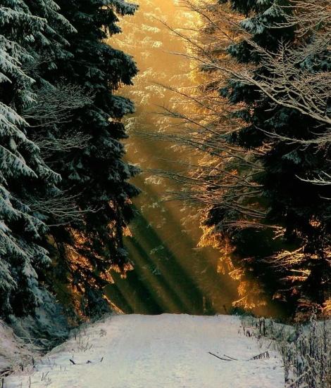 WEEKLY SPIRITUAL ENERGY- December 7, 2020 - December 14, 2020, by Lady Dyanna